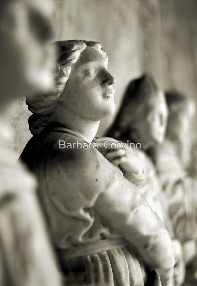 Marble's profiles by Barbara  Corvino