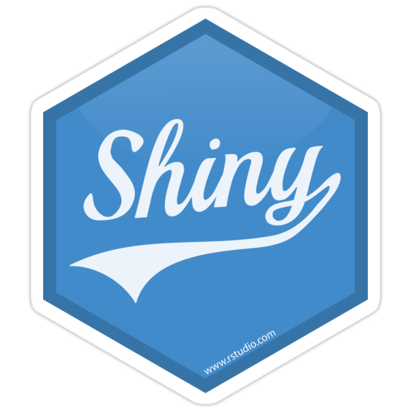 Image result for r shiny logo