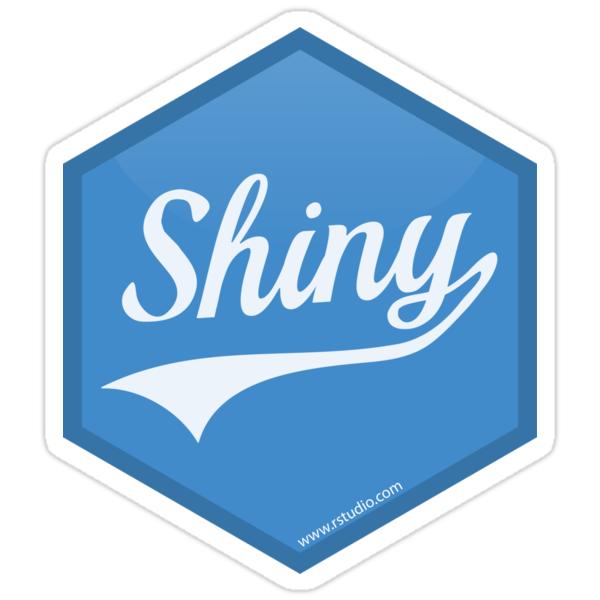 Image result for r shiny logo