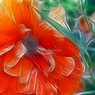 Fragmented Orange by Jody Johnson