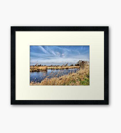 The Rottige Meenthe Framed Print