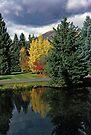 Autumn Reflection by John Schneider