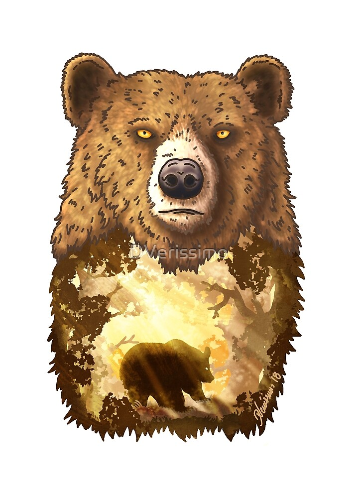 Brown Bear by DVerissimo