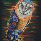 Colorful Owl by SpiritSeekers