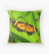 Heloconius Butterfly Throw Pillow