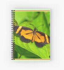 Heloconius Butterfly Spiral Notebook