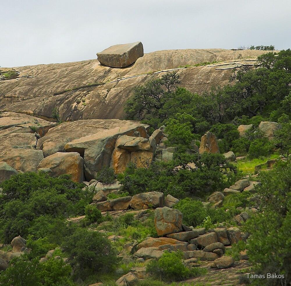 Enchanted Rock, Texas by Tamas Bakos