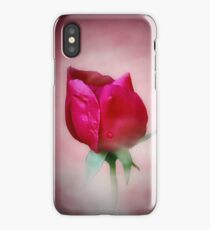 Late Summer Rose iPhone Case