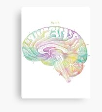 Ancient Brain Drawing - Type C Canvas Print