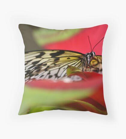 Idea Leuconoe Throw Pillow
