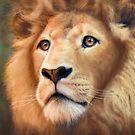 Lion by Daniel Ranger