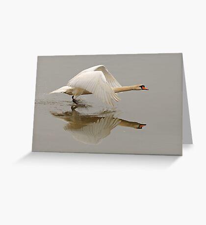 Swan Taking Flight Greeting Card