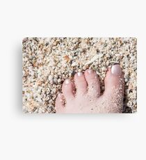 Seashells between her Toes Canvas Print