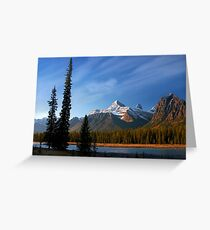 Icefields Parkway National Park, Lodgepole Pine and river, Alberta, Canada. Greeting Card