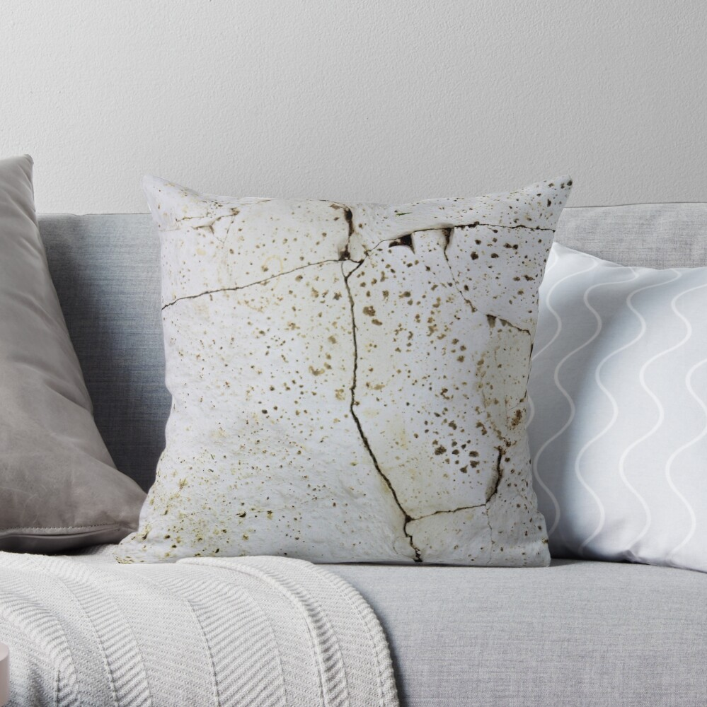 Cracked chalk Throw Pillow