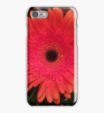 Gerber Daisy, Red iPhone Case/Skin