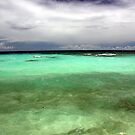 Turquoise waters by Michelle Dry