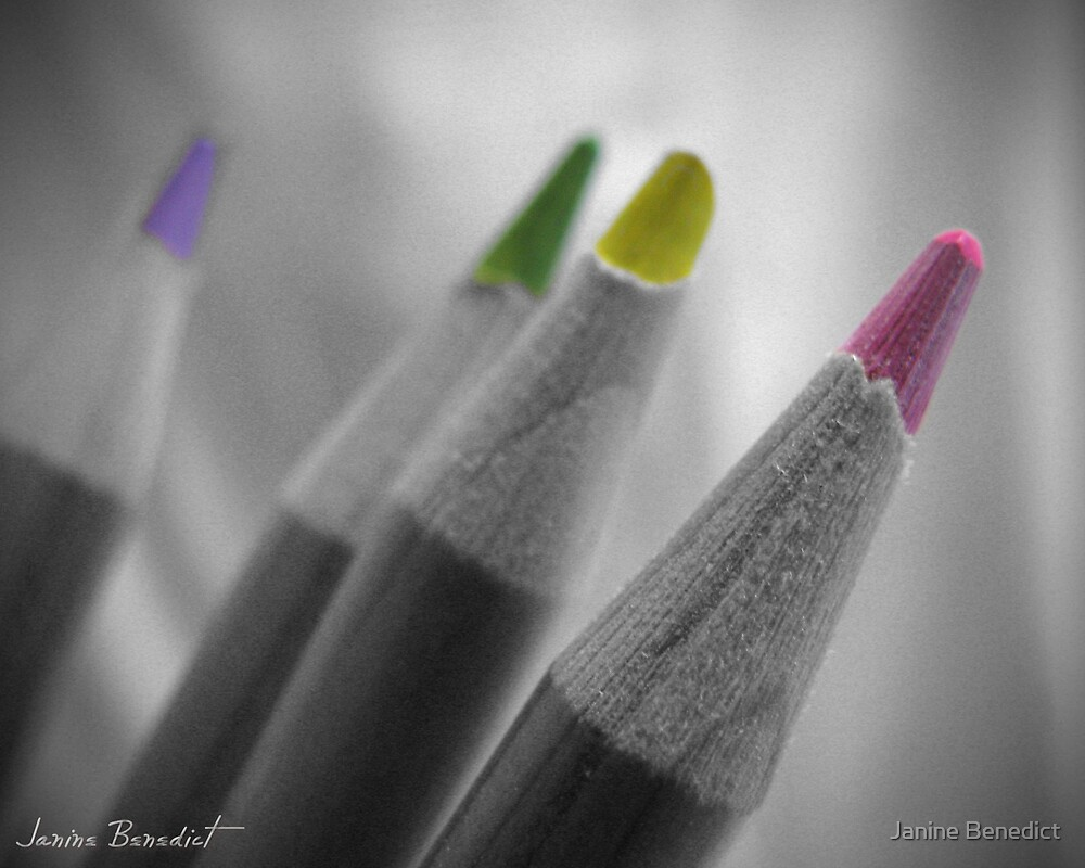 Color My Gray World by Janine Benedict