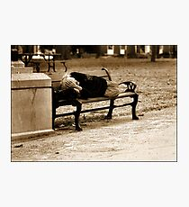 Homeless  Photographic Print