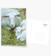 Mother and her twins Postcards