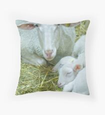 Mother and her twins Throw Pillow