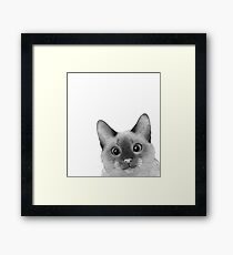 Siamese sneak-a-peek Framed Print