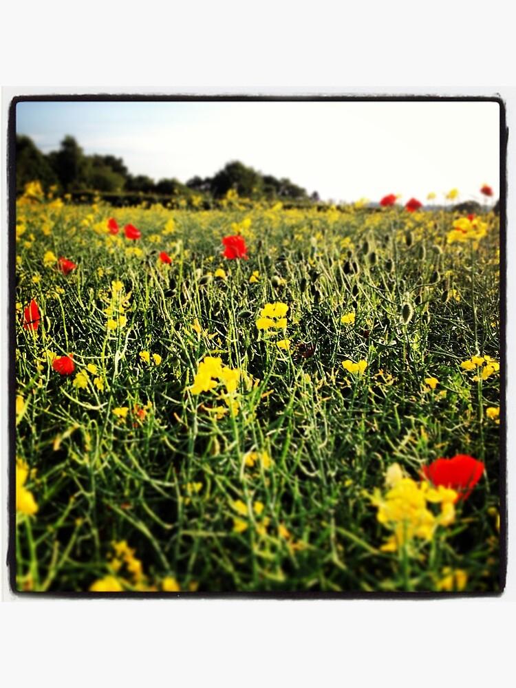 Wildblume von JonSpearsStuff