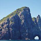 Motu Kōkako, Bay Of Islands, New Zealand by lezvee