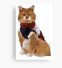 hapi kitty Canvas Print