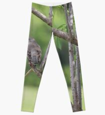 Mockingbird Leggings