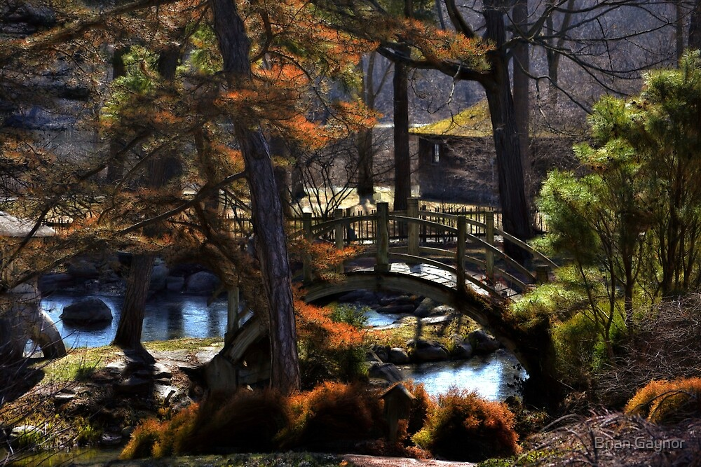 Japanese Tea Garden by Brian Gaynor