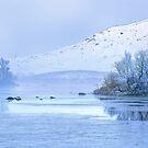 Frosty morning on Rannoch Moor, Glencoe, Scottish Highlands, UK by Wendy  McDonnell