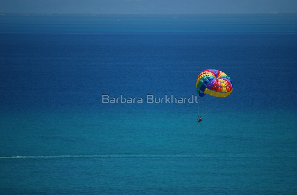What A Water View by Barbara Burkhardt