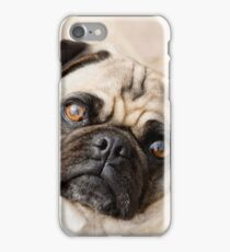 Pug Face iPhone Case/Skin