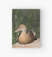 Plumed Whistling-duck Hardcover Journal
