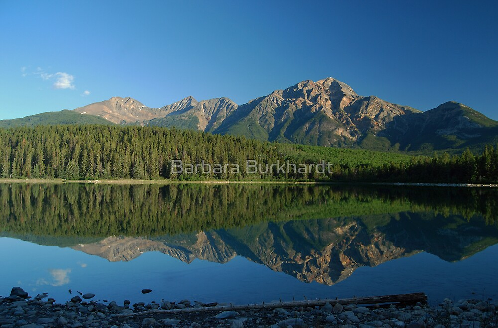 Mirror Image - Patricia Lake by Barbara Burkhardt