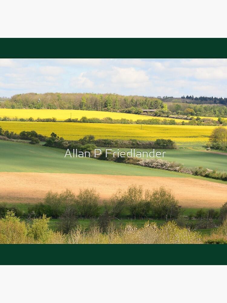 Fields  by afriedlander