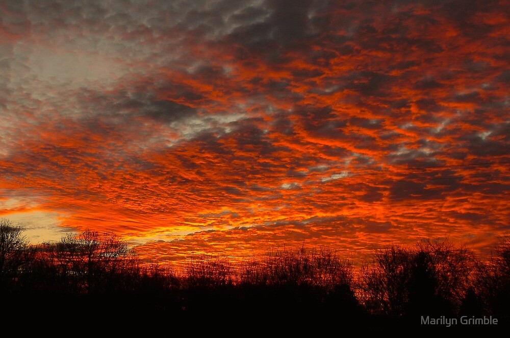 UP IN FLAMES by Marilyn Grimble