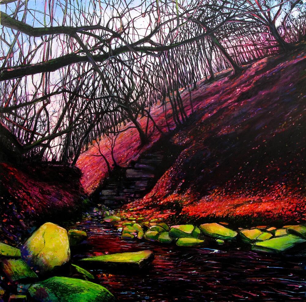 Last light -Rivington by rickdickinson
