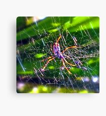 Oh What A Tangled Web We Weave! Canvas Print