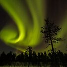 Northern light in Finland by Gabor Pozsgai