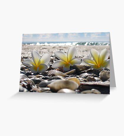 franjipanis and shells Greeting Card
