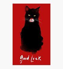 lucky cat Photographic Print
