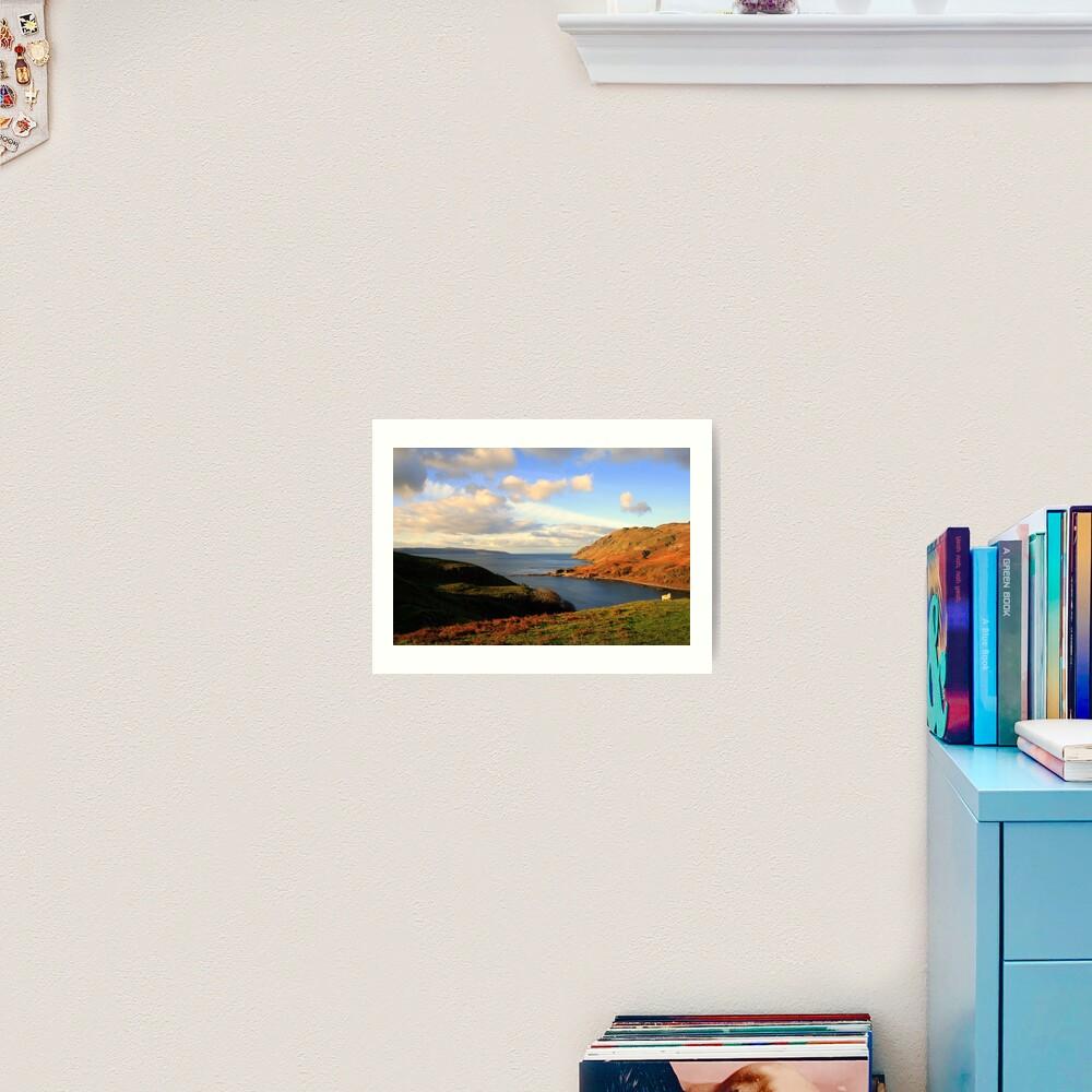 Ardnamurchan Sheep Art Print