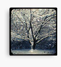 Winter Cherry Tree TtV  Canvas Print