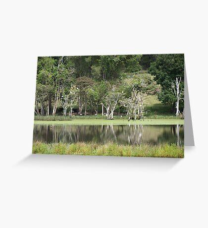 Kempsey Pond Greeting Card