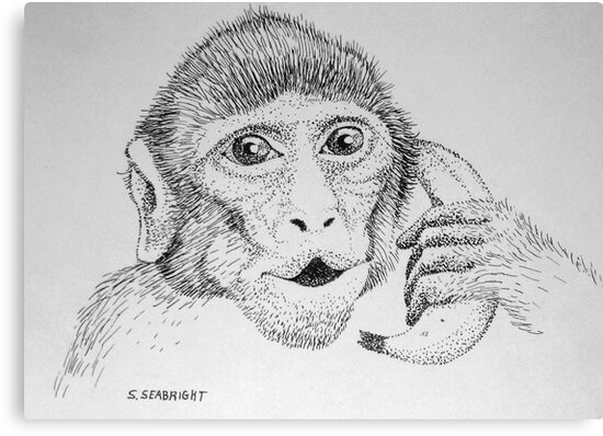 "Monkey on ""Phone"" by sally seabright"