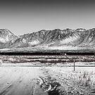 Stop Sign, Richardson Highway, Alaska by Dean Bailey