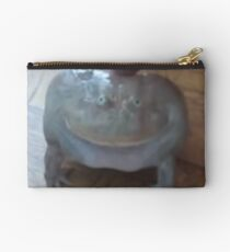 low quality screaming frog Studio Pouch