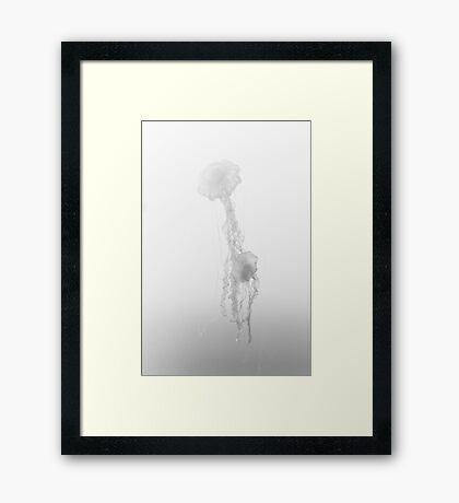 Fading to Light Framed Print